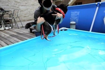 レジーナリゾート富士温泉水プール39
