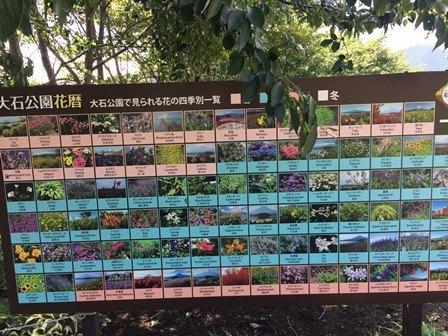 大石公園19