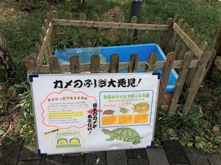 休暇村富士二泊目朝食36