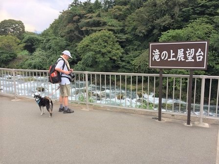 白糸ノ滝 (60)