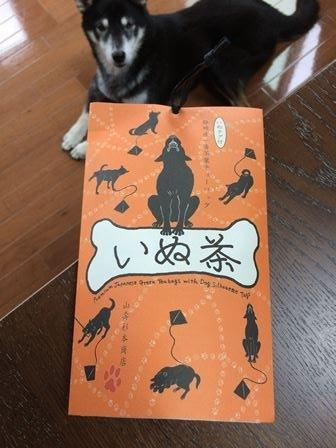 いぬ茶 (1)