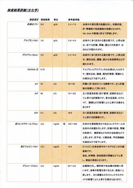 病院1210検査結果9