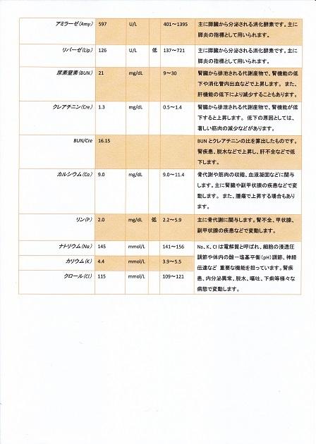 病院1210検査結果10