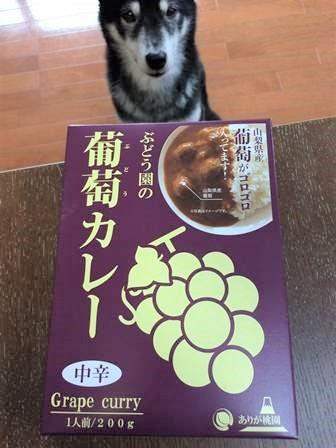 ぶどう園葡萄カレー1