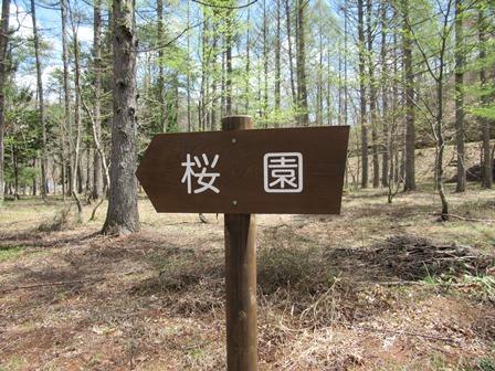 荘川であいの森35