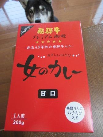飛騨牛女カレー1