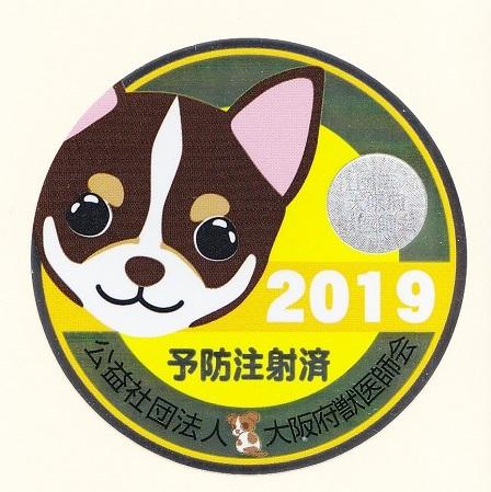 2019狂犬病4