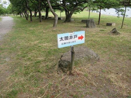 豊公園(長浜城跡) (16)
