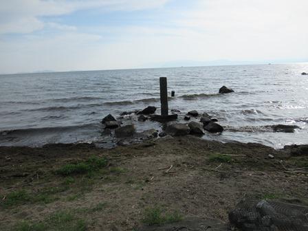 豊公園(長浜城跡) (17)