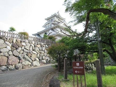 豊公園(長浜城跡) (32)