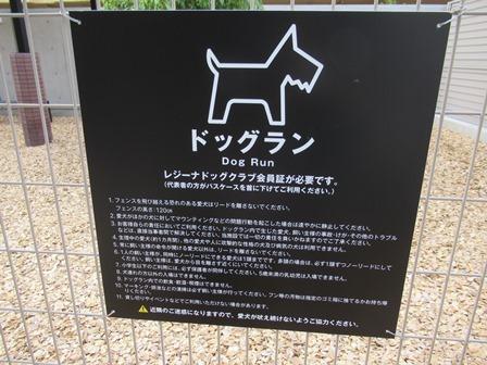 長浜ドッグラン (5)