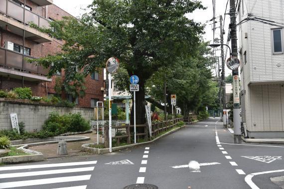 千川親水公園①
