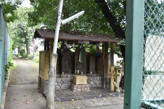 千川親水公園④
