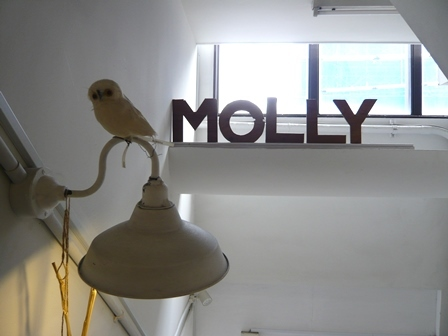 molly:外観5