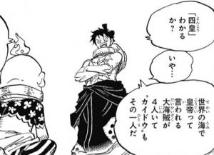 四皇を知らないヒョウ五郎