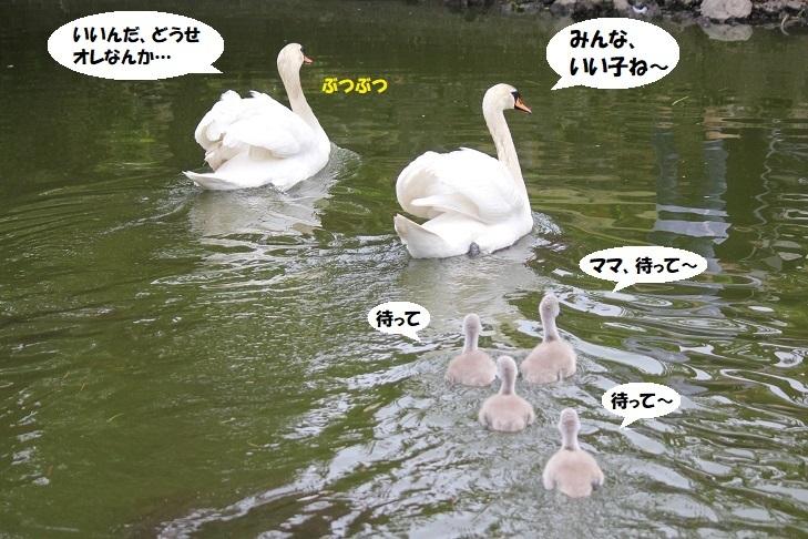 IMG_0821 - コピー