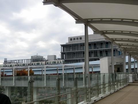 2018-11-07 東京2 003 (480x360)