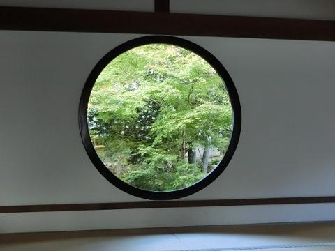 2018-11-14 京都 1 019 (480x360)