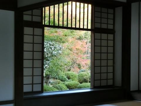 2018-11-14 京都 1 020 (480x360)