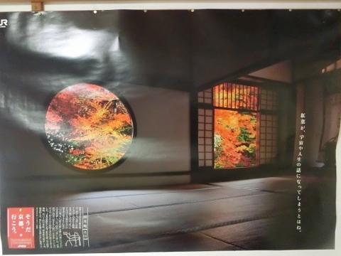 2018-11-14 京都 1 032 (480x360)