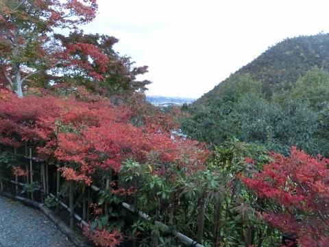 2018-11-14 京都 1 053 (480x360) - コピー