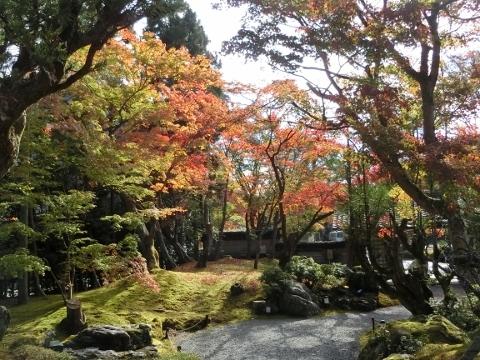2018-11-15 京都 2 010 (480x360)