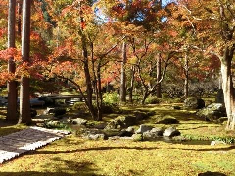 2018-11-15 京都 2 020 (480x360)