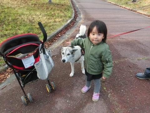 2018-11-22 散歩 1 006 (480x360)