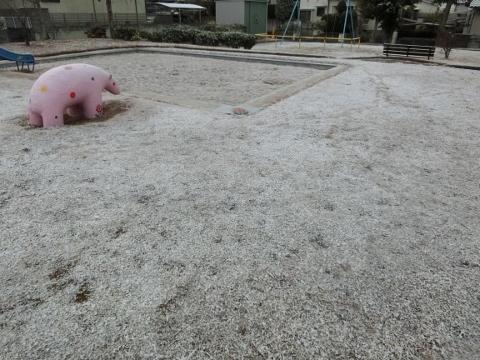 2019-01-27 散歩 002 (480x360)