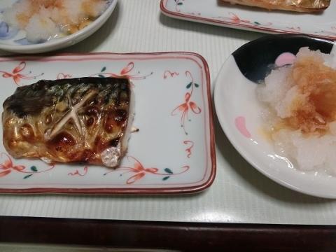 2019-03-08 晩ごはん 005 (480x360)