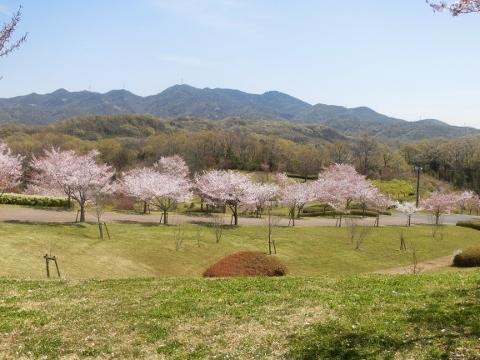 2019-04-16 防災公園 007 (480x360)
