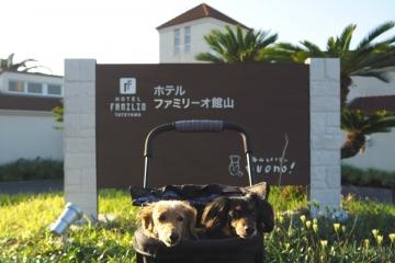 H30102176ファミリーオ館山