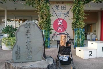 H30111118保田小文化祭