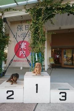 H30111119保田小文化祭