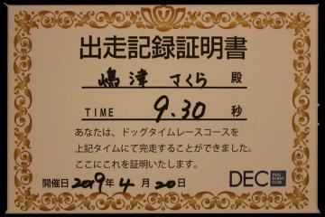 H31042019横浜ドッグウィーク