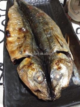 魚焼き器は遠赤外線_result