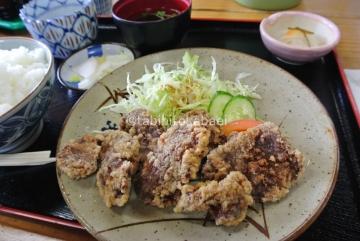 地元産鹿肉竜田揚げ_result