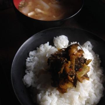朝から食の進む宮崎高菜_result