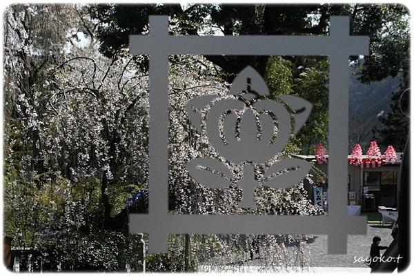 sayomaru26-434.jpg