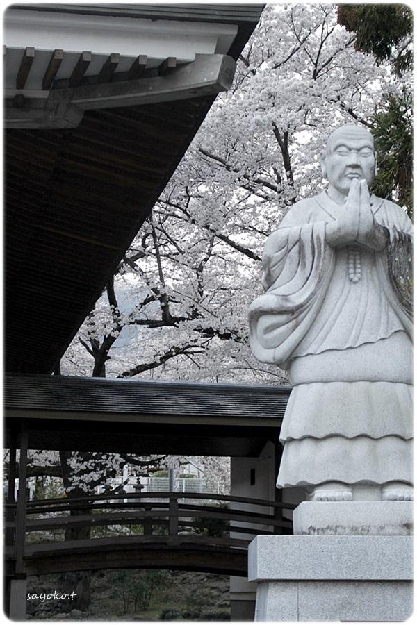 sayomaru26-502.jpg