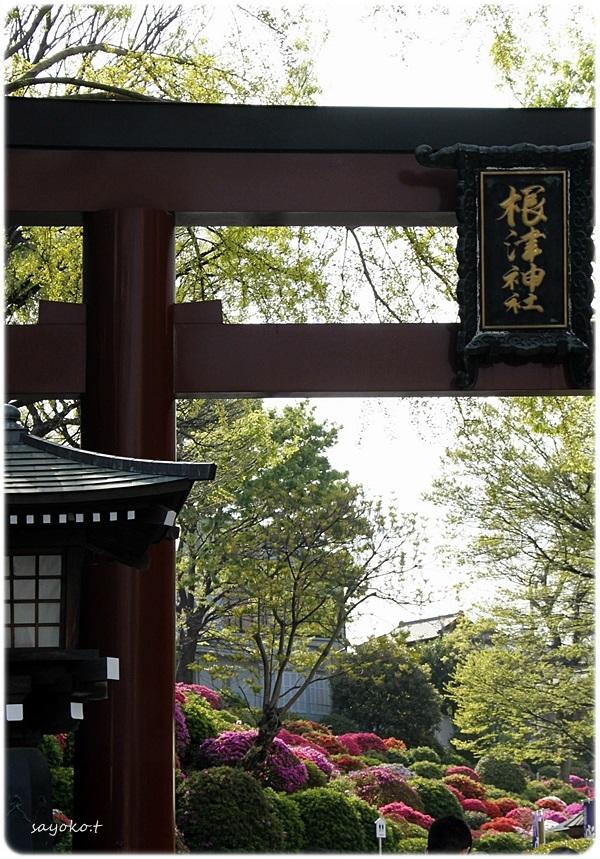 sayomaru26-574.jpg