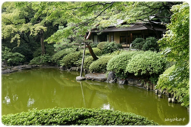 sayomaru27-749.jpg