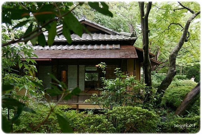 sayomaru27-752.jpg