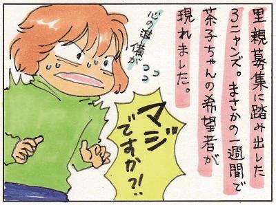 茶子ちゃんが!! 1-2