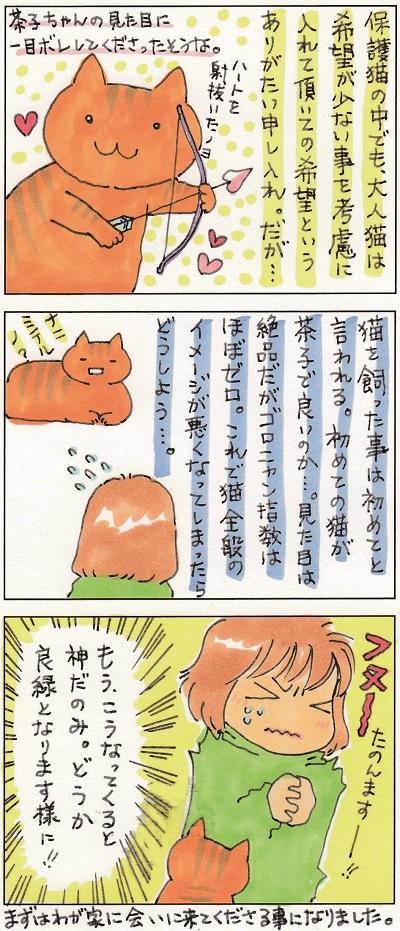 茶子ちゃんが!! 2-2