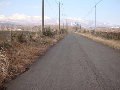 桜台道路(標高580m)