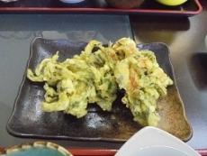 ブログ15野草天ぷら