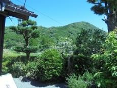 ブログ27お庭と山