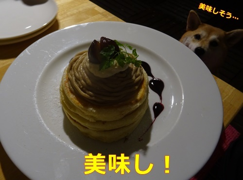 5パンケーキ