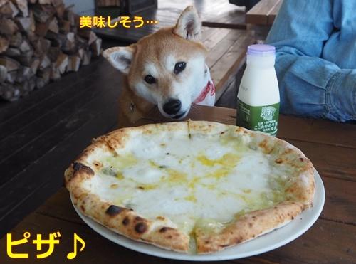 2長門のピザ